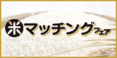 米マッチングフェア サイト